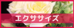 logo-exercise